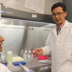 Hexin Chen and other researchers are trying to make a cure for cancer possible with the new cancer stem cell approach to oncology.