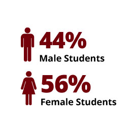Infographic: 44% Male Students, 56% Female Students