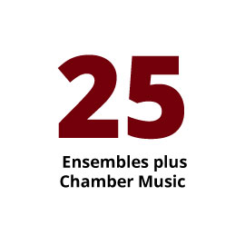 Infographic: 25 Ensembles plus Chamber Music
