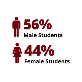 Infographic: 56% Male Students, 44% Female Students