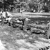 Workers bricking over the asphalt driveway on the Horseshoe, circa 1975. Cars were also banned from the Horseshoe, partially due to the soft nature of the bricks used to repave the drive.