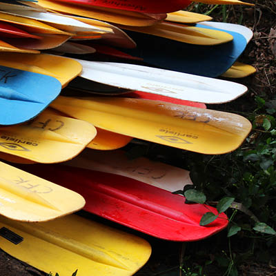 colorful canoe paddles