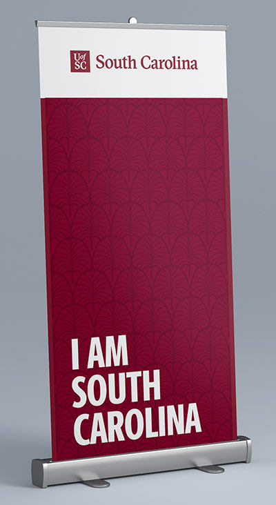 I am South Carolina display