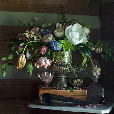 Arrangement by Anna Westbury