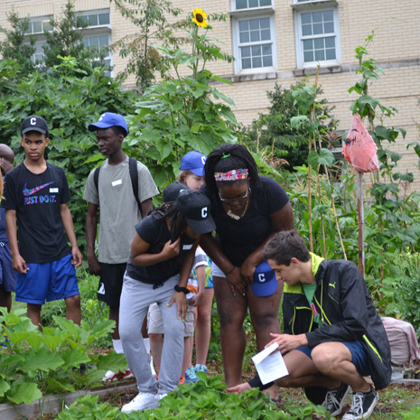 Children from the Columbia community participating in Camp GLEA - learning more about our garden