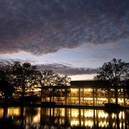 Thomas Cooper Library at night