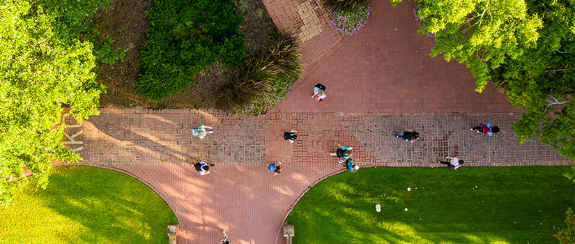 Drone shot of a path at UofSC with students walking on it