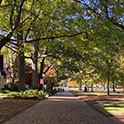 view of the historic horseshoe on uofsc campus