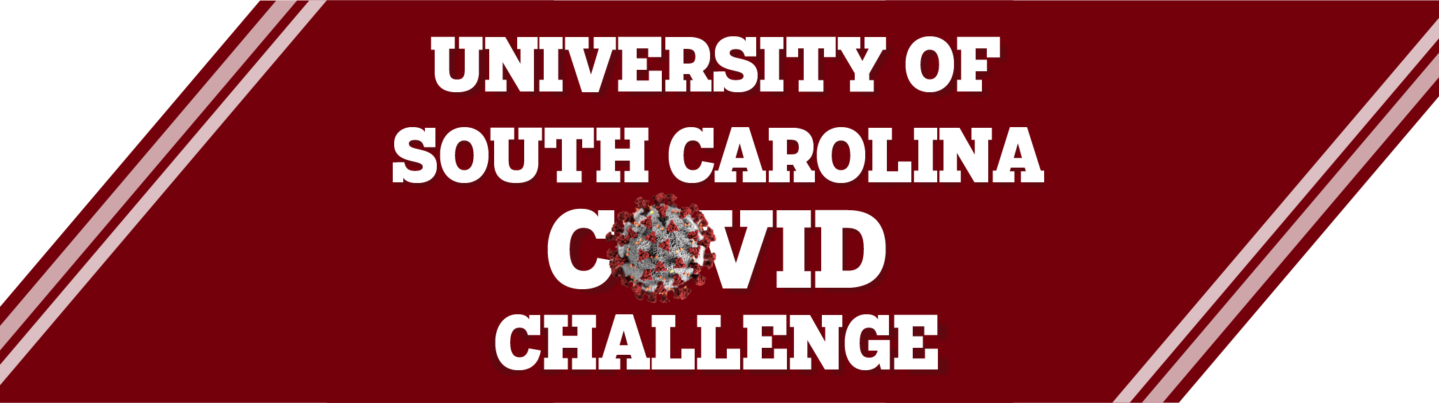 Banner highlighting University of South Carolina COVID challenge