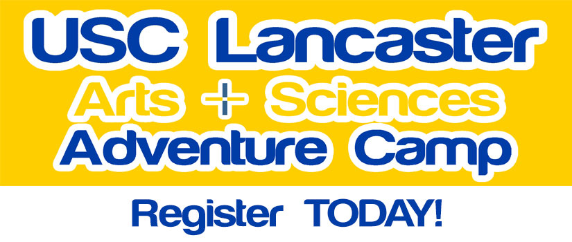 Arts and Sciences Adventure Camp