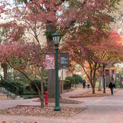 Students walking along brick walkways on the Horseshoe at the University of South Carolina's Columbia campus