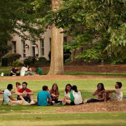 Group of about eight students sitting on the grass on the Horseshoe