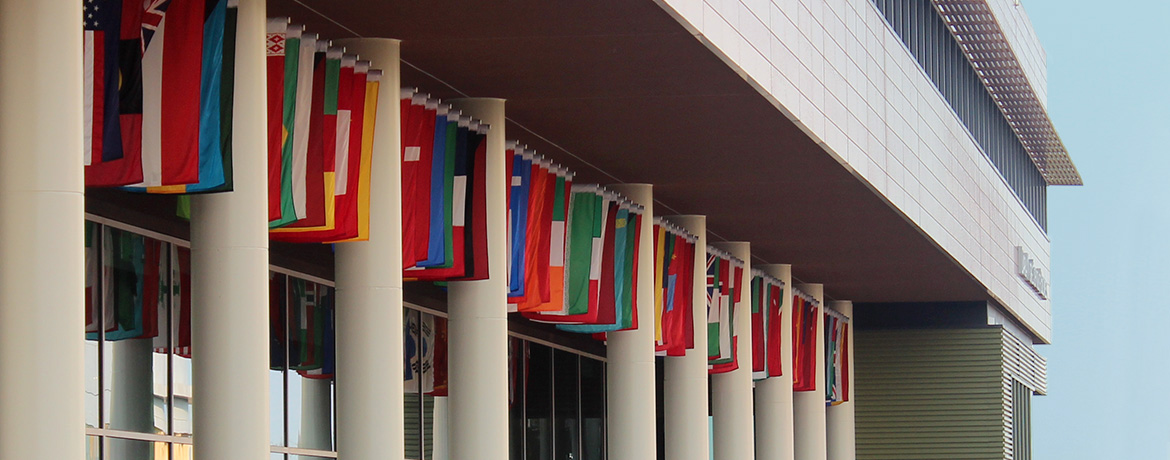 country flags hanging between the columns of the Darla Moore School of Business