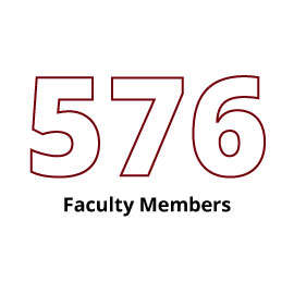 Infographic: 576 Faculty Members