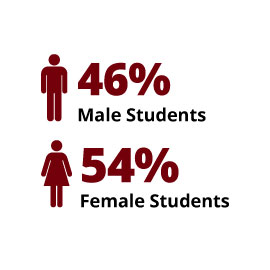 Infographic: 46% Male Students, 54% Female Students