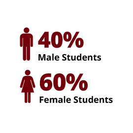 Infographic: 40% Male Students, 60% Female Students