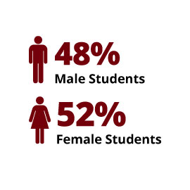 Infographic: 48% Male Students, 52% Female Students