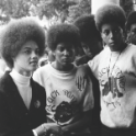 The Black Panthers film still