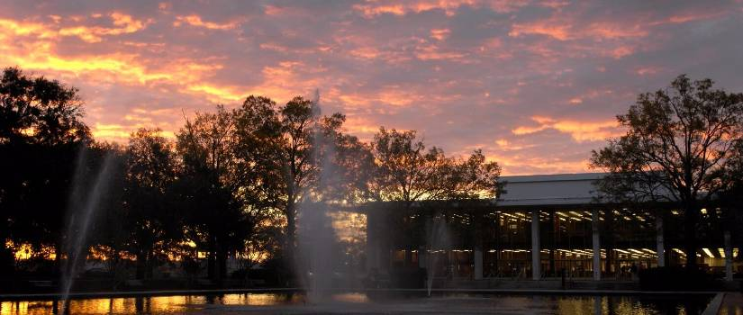 Sunset over Thomas Cooper Library