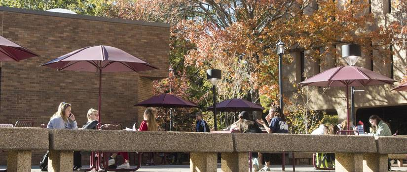 Students sitting at tables outside in the fall sun