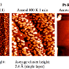 Scanning tunneling microscopy images for Re films deposited on Pt(111) at room temperature and heated to 1000 K to form the surface Pt-Re alloy.  At 800 K, the Re islands coalesce into larger clusteres, but at 1000 K, all of the Re diffuses into the Pt surface.