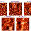 Scanning tunneling microscopy images for five different metal particles deposited on rutile TiO<sub>2</sub>(110), with the average cluster heights shown above each image.  The particle size decreases with increasing metal-titania interaction and metal-oxygen bond strengths; images are 1000Å x 1000Å.