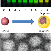 Top: Luminescent CdSe/CdS core/shell quantum dot solutions; Middle: Graphic for CdS shell growth on CdSe qunatum dots; Bottom: STEM image of CdSe/CdS core/shell quantum dots