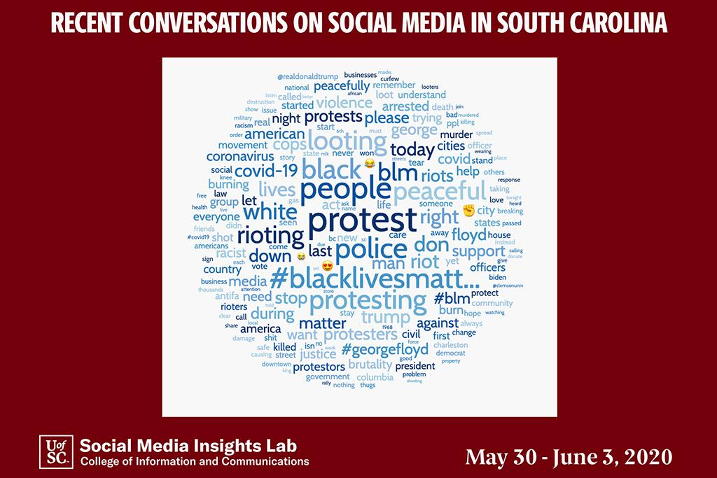 This word cloud generated by the lab's Crimson Hexagon software identifies key words found in the posts from May 30-June 3 and shows the range of comments and concerns found in the analysis.
