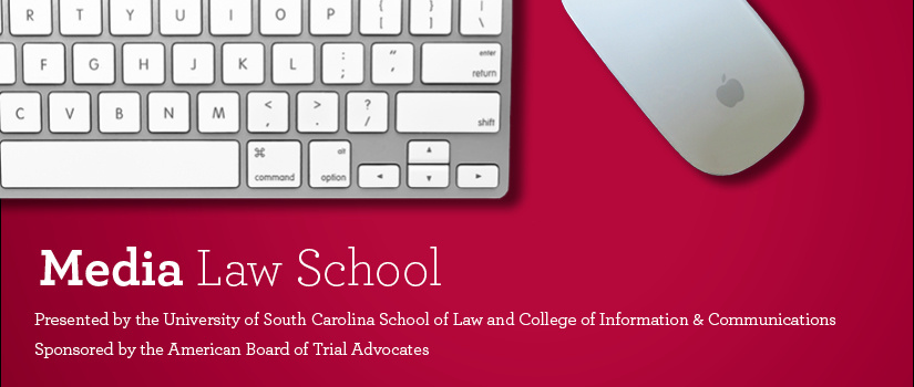 Media Law School logo