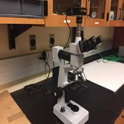 Basic Optical Microscope