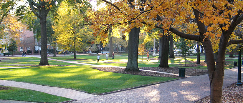 Photo of the lush green space known as the Horseshoe at the historic heart of the University of South Carolina