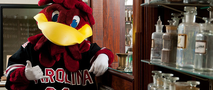 UofSC mascot Cocky in the College of Pharmacy museum