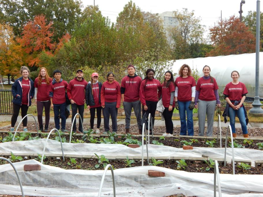 The Nutrition Consortium Fall Service Project Team