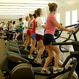 Row of people exercising on cardio equipment