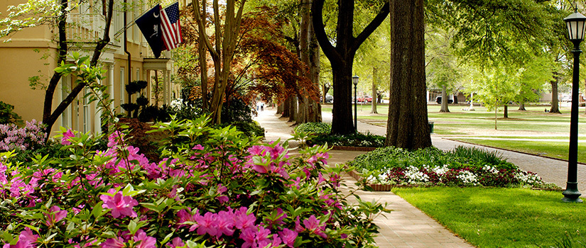 University of South Carolina horseshoe park