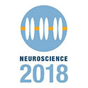 Neuroscience 2018 Image