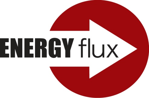 ENERGY FLUX STUDY logo