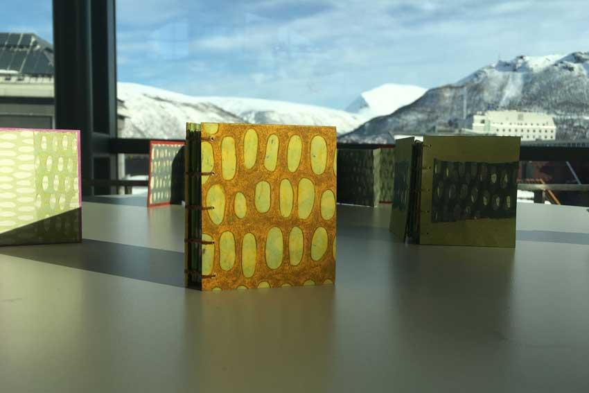 One of printmaking professor Mary Robinson's handmade books is on display in Tromso, Norway. The pieces in the Forgotten Stories of Frozen Seeds exhibition were shared with the public before being interred in a mountain adjacent to the Svalbard Global Seed Vault near the North Pole.