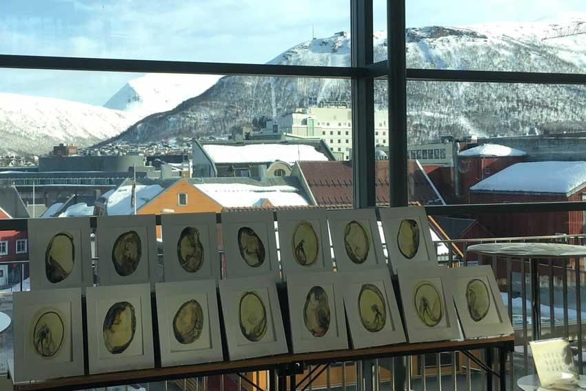 Sara Schneckloth's seed drawings are on display here in Tromso, Norway as part of the Forgotten Stories of Frozen seeds international exhibition.