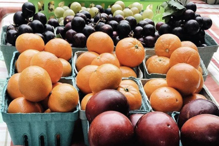 Produce on a table at the farmer's market.