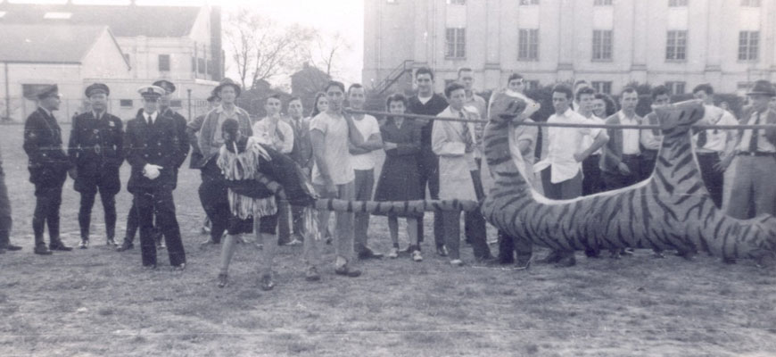 An original photo of a tiger burn in the 1940s, provided by the University archives. It depicts a life-sized stuffed tiger held on a stick ready to be roasted.