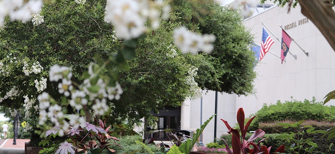 The Russell House Building in focus artistically peaking through out of focus foliage