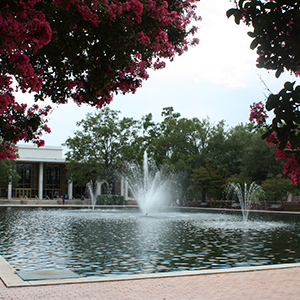 the fountain in the reflecting pool in front of Thomas Cooper Library