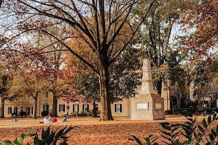 Outdoor, fall scene at UofSC's horseshoe.The Horseshoe is full of fall colored trees and fallen leaves.